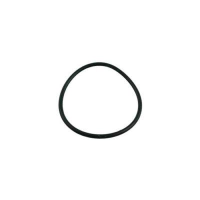 Dynaglass/Mastertemp Union O-Ring - Total Tech Pools Oakville