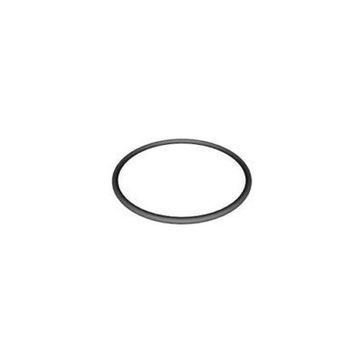 Hayward Ez-Flo/Super Pump Lid O-Ring - Total Tech Pools Oakville