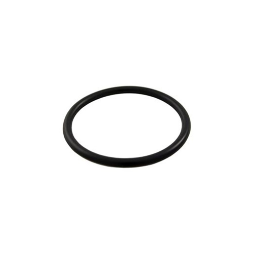 Pentair Clean And Clear Plus O Ring For Drain Plug - Total Tech Pools Oakville