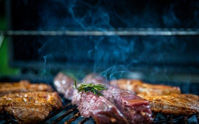 The Saber BBQ Grilling Guide