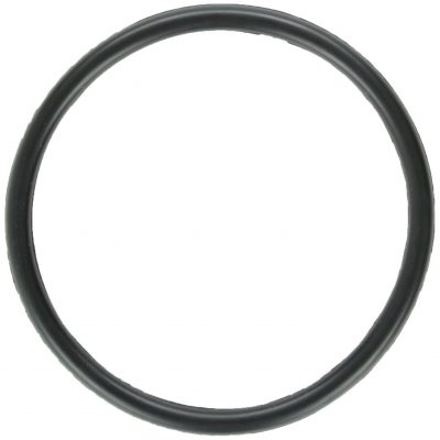 Zodiac Nature 2 Replacement O-Ring - Total Tech Pools Oakville